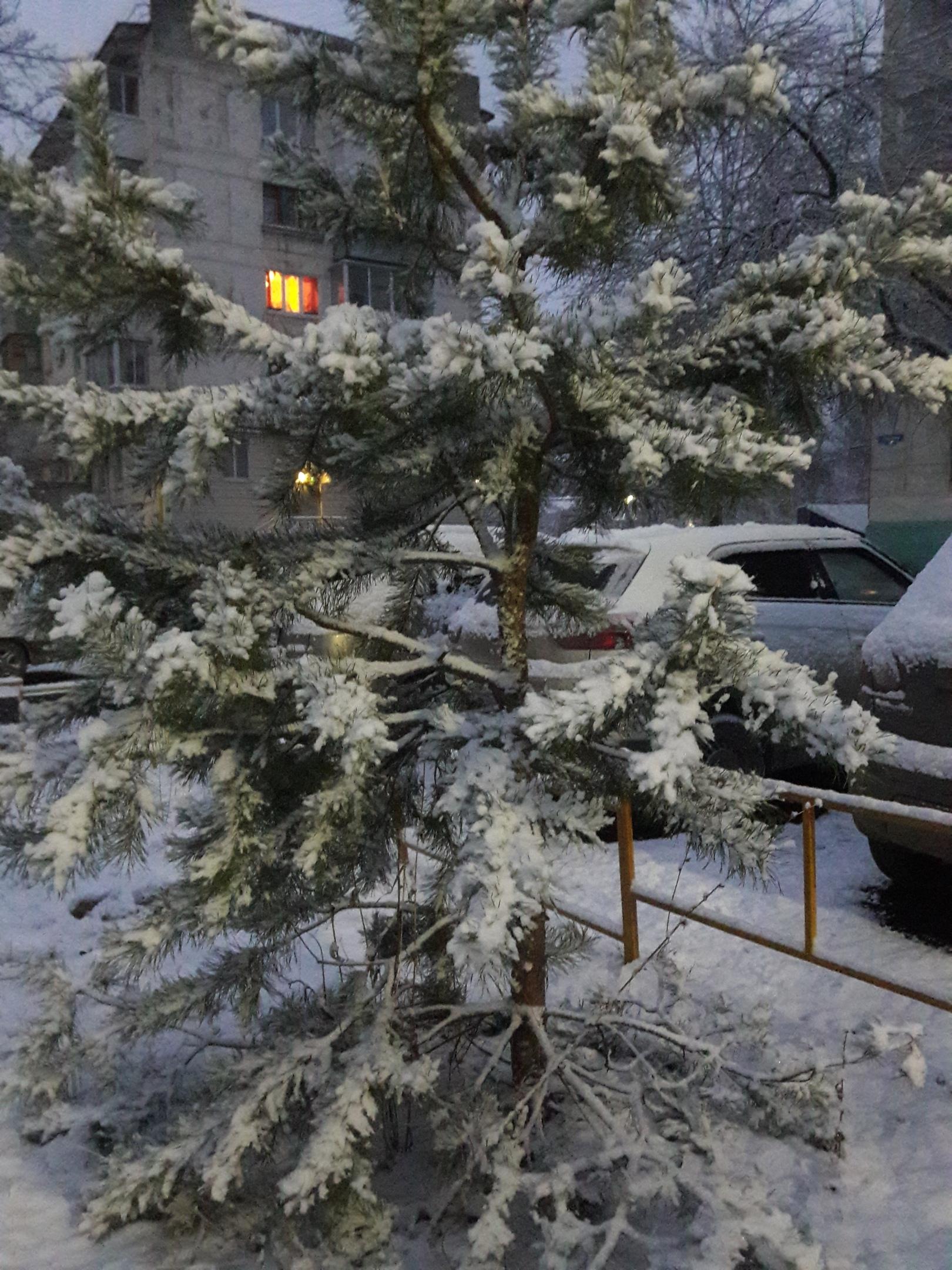 снег, чайковский район, 2020 год