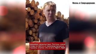 Почему русский лес продают в Китай и Европу?