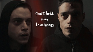 i hate when I can't hold in my loneliness // elliot alderson