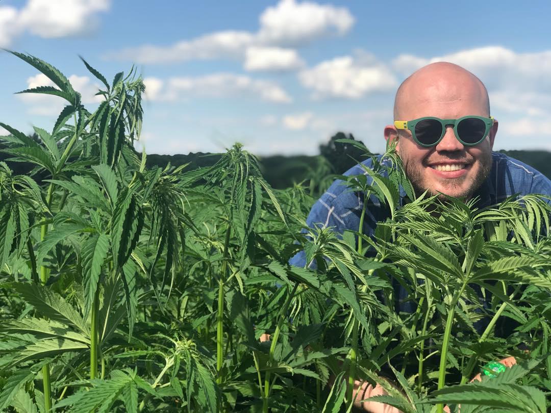 Рассказы про коноплю марихуана какой кайф