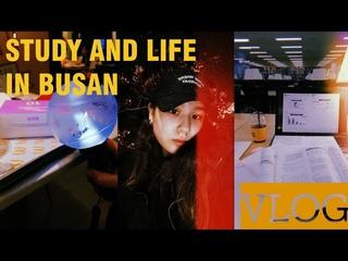[VLOG] 한국에서의 첫 수영, 맥도날드 bts세트, 무인 아이스크림 가보기,진주에서 수