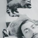 Личный фотоальбом Yury Ef