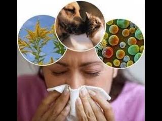 Аллергия 1.0 Энерготерапия Сознания
