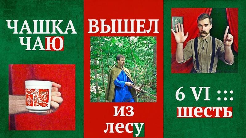 ПАДЕЖИ русского языка, которые НЕ ИЗУЧАЮТ В ШКОЛЕ   Правда ли, что их больше шести?