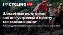 Шоссейные велогонки: как они устроены и почему так завораживают. Александр Фолифоров