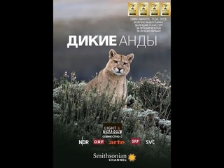 Дикие Анды / The Wild Andes / Серия 1 Жизнь в облаках / Life in the Clouds 4К