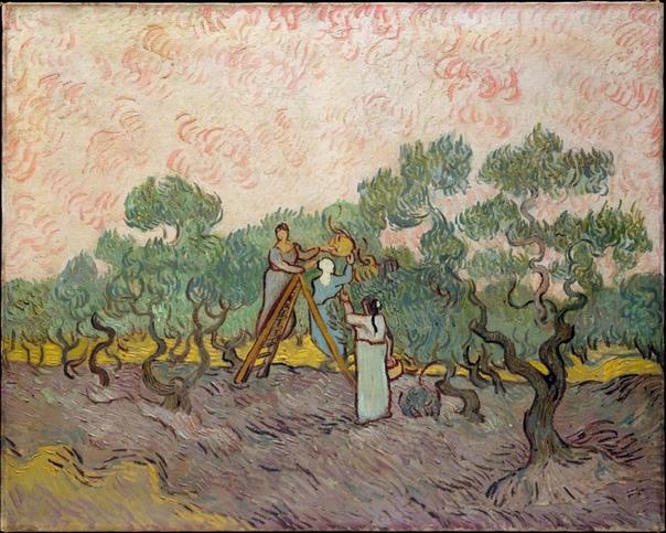 Серия «Оливковые деревья» 1889, Винсент Ван Гог