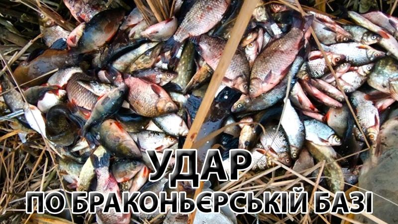 Браконьєри на Дніпрі Щось пішло не так Стільки риби я ще не бачив