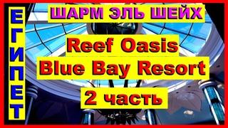 Египет. Шикарный риф отеля Reef Oasis Blue Bay Resort &SPA 5* 2часть