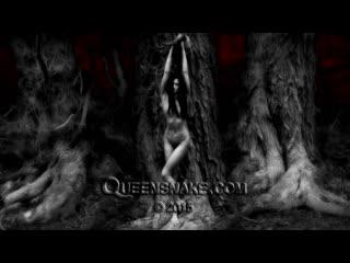 QueenSnake