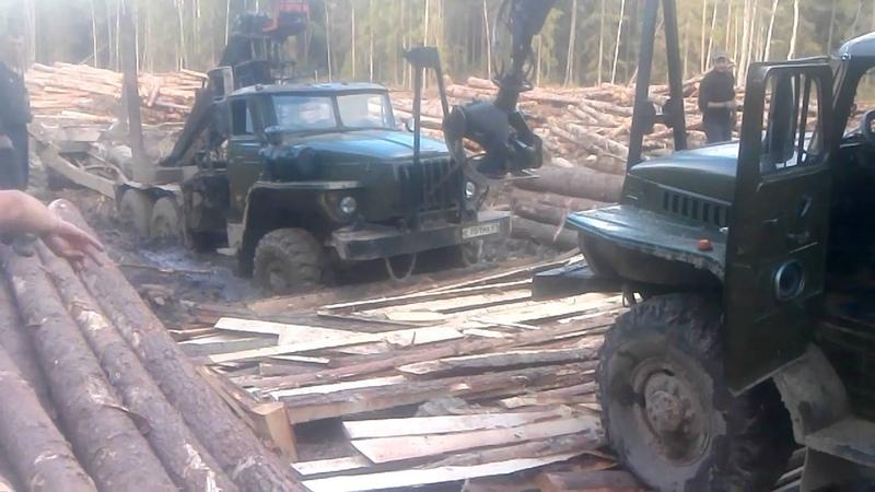 Лесовозы в Тверских болотах