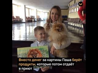 Мальчик рисует портреты кошек и собак, чтобы помочь бездомным животным (1)