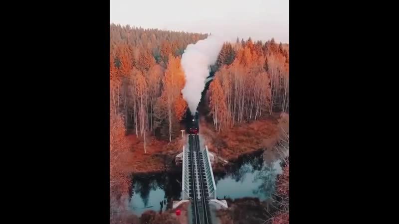 У каждого своя дорога в осень