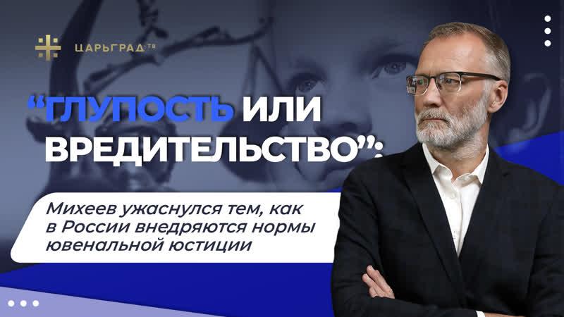 «Глупость или вредительство» Михеев ужаснулся тем, как в России внедряются нормы ювенальной юстиции
