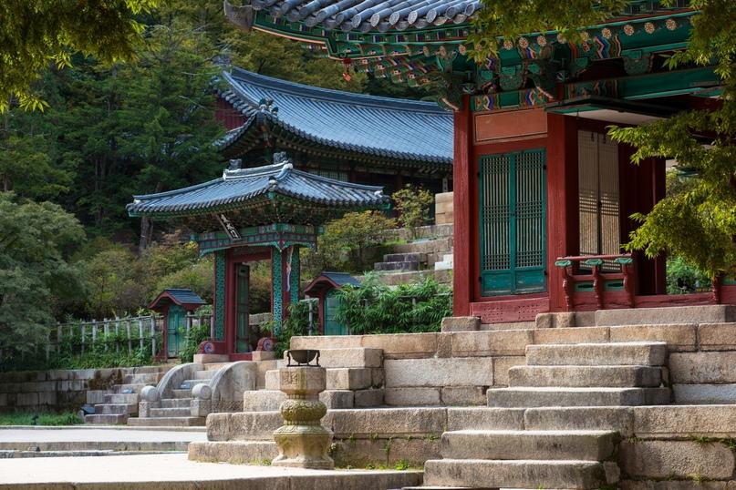 Причины посетить Южную Корею, изображение №9