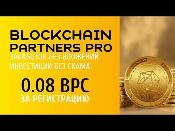 Когда начислят 0.08 BPC за регистрацию и начнутся выплаты дивидендов | Blockchain Partners Pro