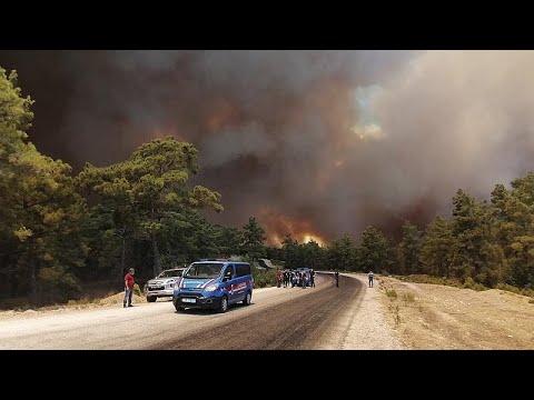 Лесной пожар в провинции Анталья