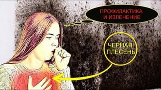 ЧЕРНАЯ ПЛЕСЕНЬ - МУКОРМИКОЗ - ПОДРОБНО