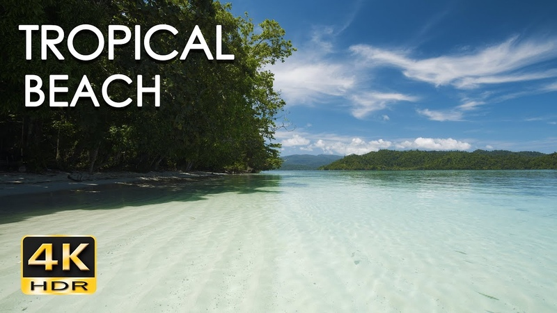 Tropical Beach - Gentle Ocean Wave Sounds - Peaceful Wild Island - Relaxing Nature Video