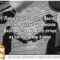 ДимаПеревозчиков