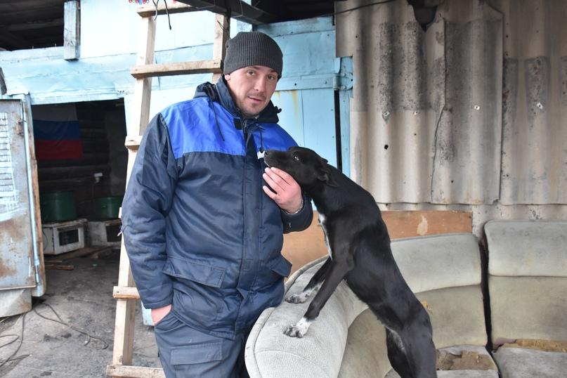 Павел Войтов с собакой по кличке Черная, которая вернулась в питомник из Нового Городка. Даже бездомной собаке хочется внимания