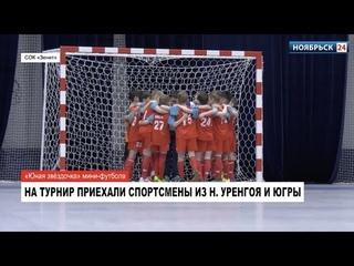 В Ноябрьске завершился открытый турнир по мини-футболу «Юная звёздочка»