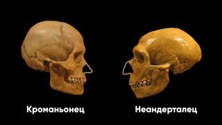 ВОЙНА НЕАНДЕРТАЛЬЦА против КРОМАНЬОНЦА (СССР, НАШИ ДНИ)