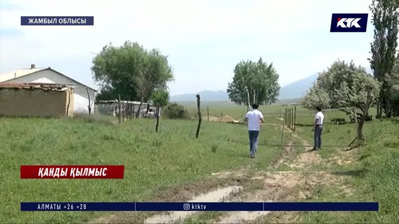 Жамбыл облысында Өзбекстан азаматы екі әйелді айуандықпен бауыздап өлтіріп кетті
