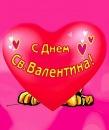 Фотоальбом человека Николая Кириллина