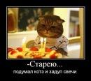 Фотоальбом Алексея Комиссарова