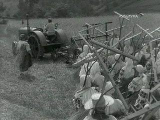 Богатая невеста (1937) MINIZAL.NET