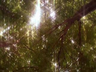 Robin Hood BBC Колыбельная Тэм Гринхилл