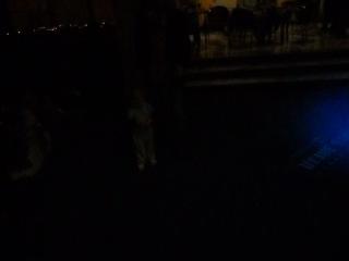 Софья на концерте билликов=)