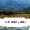 Детский языковой лагерь Cactus