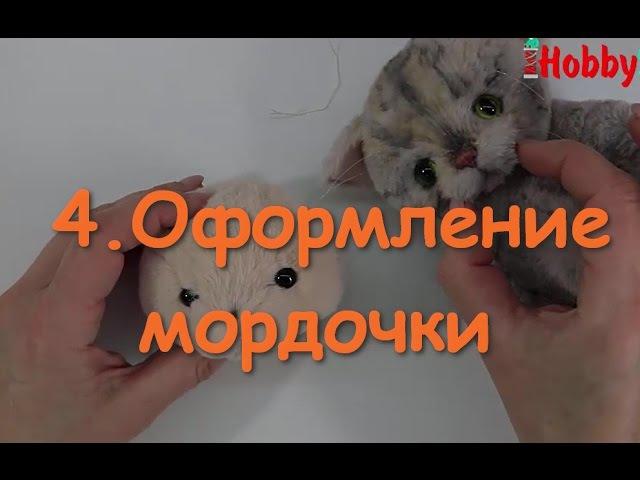 4 Оформление мордочки котенка Тедди Утяжка Стрижка Укладка ворса