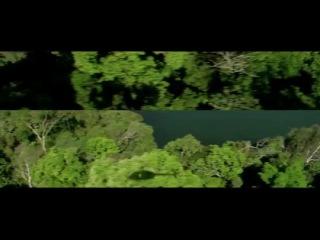 Местный (2014): Трейлер