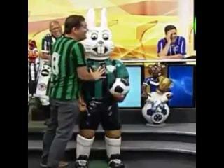 Toledo do Alterosa Esporte: Quem manda é o Galão!