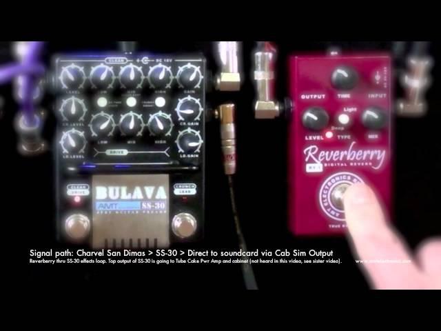 AMT SS 30 Reverberry Direct to soundcard SS 30 Cab Sim Output