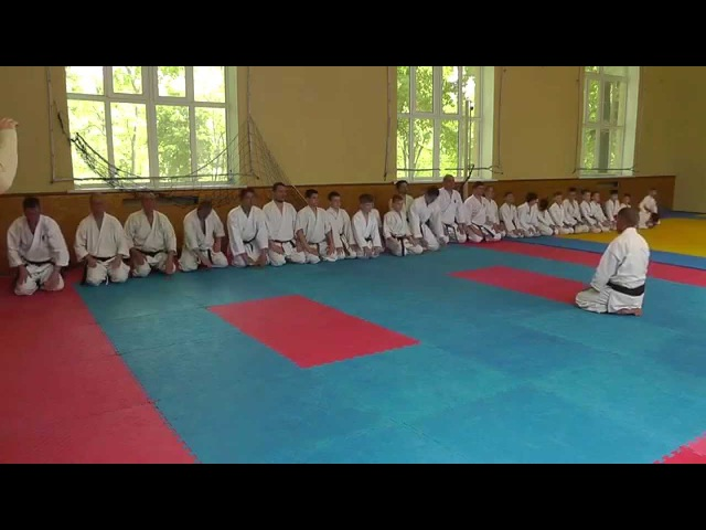 Семинар по Каратэномичи Запорожье май 2015 3 Seminar Karatenomichi Zaporozhye May 2015 3