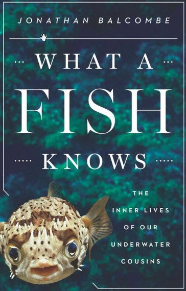 What a Fish Knows: The Inner Lives of Our Underwater Cousins - Jonathan Balcombe