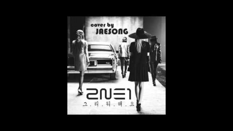 2NE1 - 그리워해요(MISSING YOU) (Cover by JaeSong)