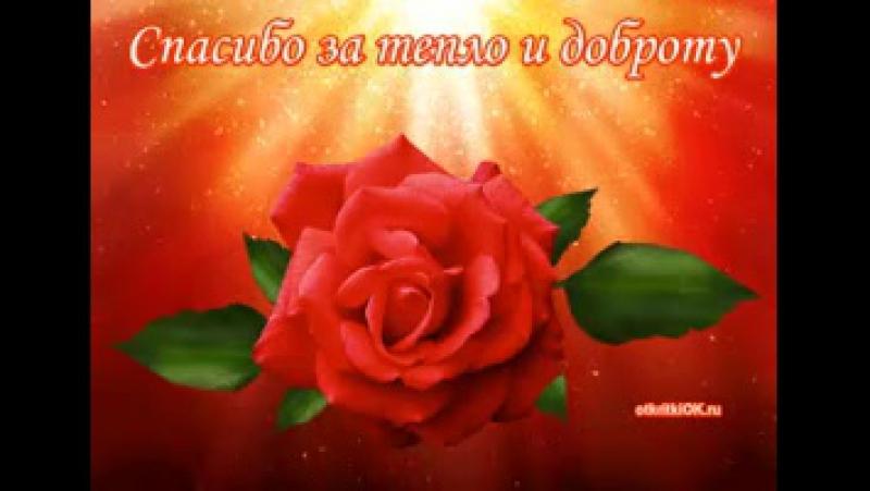 Spasibo-za-teplo-dobrotu-200x183