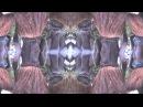 Mirco Niemeier Night Call Adler Finn Remix Music Video