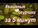 БОЧКОВЫЕ хрустящие ОГУРЦЫ Засолка огурцов за 5 минут Рецепт квашеных огурчиков