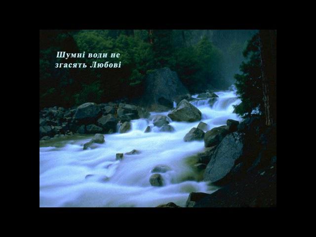 Шумні води не згасять Любові