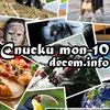 Decem.info — списки, рейтинги, ТОП-10