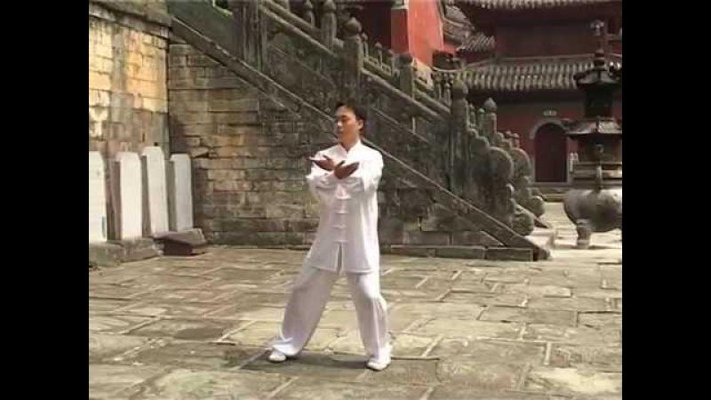 Мастер Ван Линь Ба Дуань Цзин или 8 кусков парчи