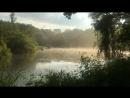 Какая красота в Терлетском парке после дождя😍