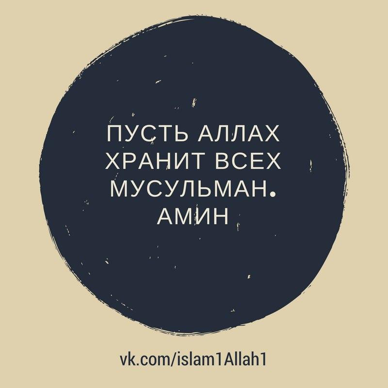 его жизнь пусть аллах хранит тебя в картинках любимому используем бахилы, так