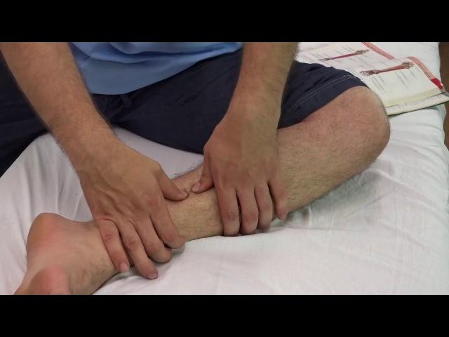 💎 Плоскостопие Самомассаж задней большеберцовой мышцы Массаж обучение
